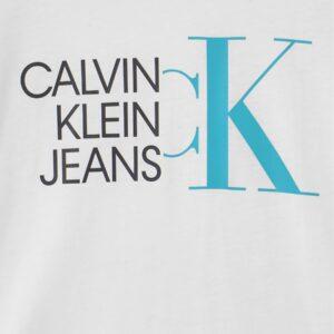 Calvin Klein T-shirt Grigia Con Logo
